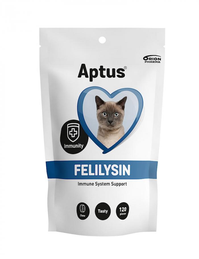 Felilysin för katt