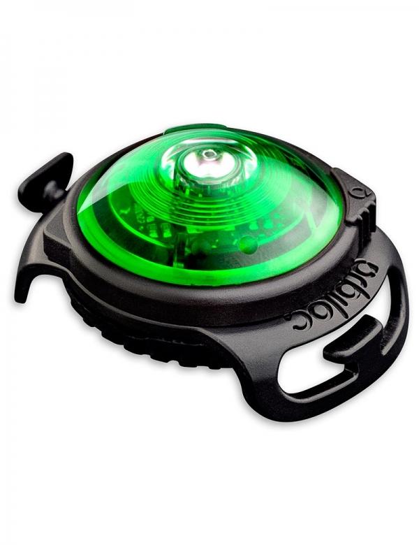 orbiloc lampa grön hund reflex