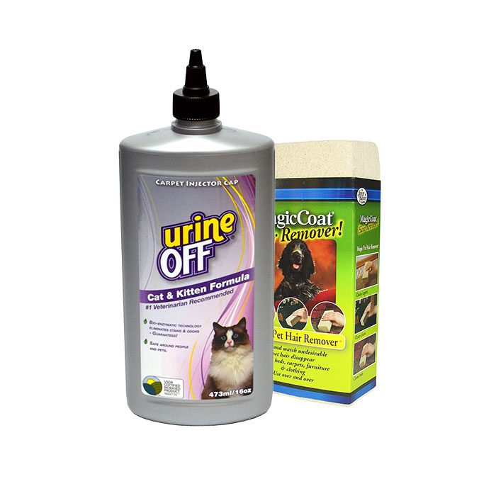Rengöring/Urinborttagning
