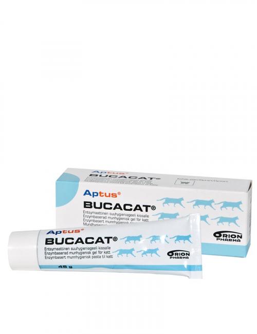 Aptus Bucacat, munhygienisk pasta till katt.