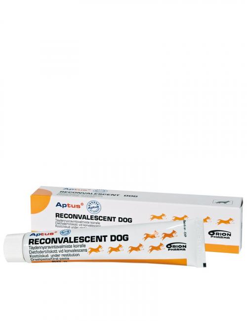 En tub Aptus Reconvalescent. Fodertillskott för hundar.