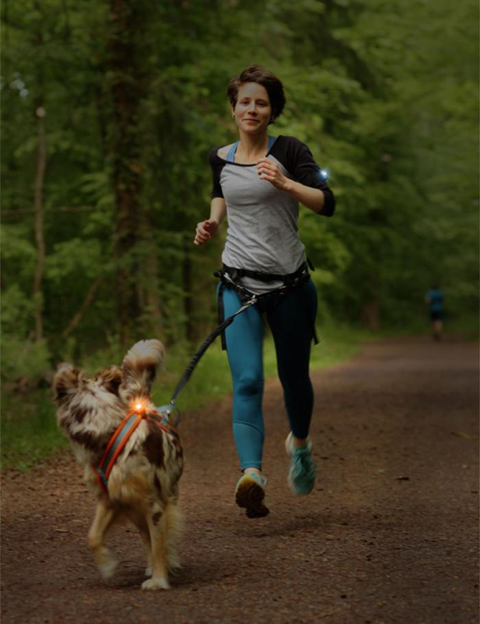 Joggare och hund med Orbiloc Dual K9 Active lampor